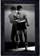 CPA Boxe Boxeur Boxing Non Circulé à Identifier - Boxing