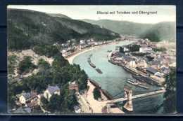 K10019)Ansichtskarte: Elbetal Mit Tetschen - Böhmen Und Mähren