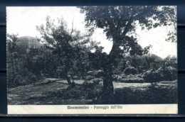 K10722)Ansichtskarte: Montecassino - Italia