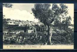K11157)Ansichtskarte: Tunesien - Sidi-Bou-Said, Panorama - Tunisia