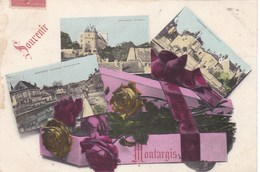 Loiret - Souvenir - Montargis - Montargis