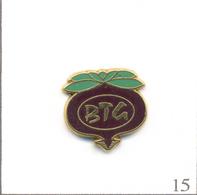 Pin's BTG (Bouthegourd) St Benoît S/Loire (45) - Mise Sous Vide & Transformation Légumes (Betterave Rouge). T628-15 - Food
