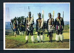 (2453) AK Südafrika - Zulu Männer - Afrique