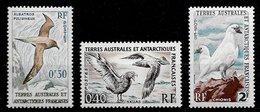 TAAF N°12 à 13A Oiseaux Marins 1959-63 ** - Unused Stamps