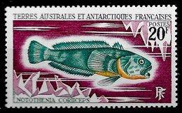TAAF N°36 Poisson 20F 1971 ** - Terres Australes Et Antarctiques Françaises (TAAF)