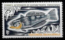 TAAF N°37 Poisson 20F 1971 ** - Unused Stamps