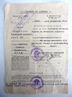 """Documento """"LETTERA DI LICENZA ORDINARIA COLONIALE"""" - Manoscritti"""