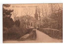 Bouwel. - Kerkweg. - Chemin De L'Eglise  1929 - Grobbendonk