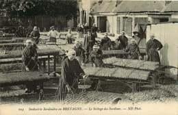 050119 - 29 Industrie Sardinière En BRETAGNE - Le Séchage Des Sardines - Pêche Poisson Métier - Autres Communes