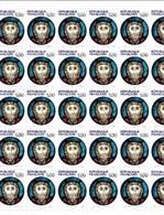 YT 2637 Christ De Wissembourg Feuille 30 TP N** Faciale 5F00 F (0.76 Euro) Cote 82.50 - Feuilles Complètes