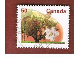 CANADA - SG 1469 - 1994 FRUIT TREES: SNOW APPLE  -  USED - Used Stamps