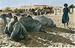 Rep. Islamique De Mauritanie  Repos Au Village   Cpa - Mauritanie