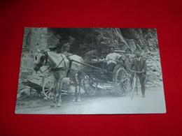 Cartolina Fotografica Mercanti Su Traino A Cavallo Con Bici D'Epoca - Mestieri