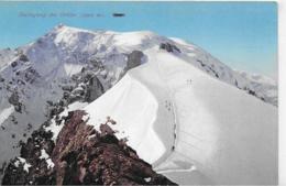 AK 0119  Besteigung Des Ortler - Verlag Amonn Um 1920 - Alpinismo