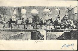 Smyrne  Caravane De Chameaux  Et   Acqueducs  CPA 1903 - Türkei