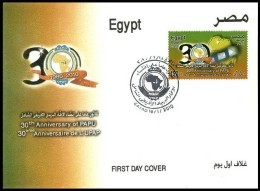 EGYPT 2010 FDC / FIRST DAY COVER PAPU ANNIVERSARY - AFRICAN POSTAL UNION - Egypt