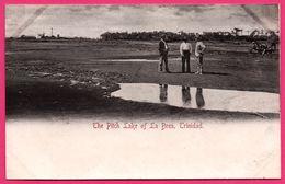 Trinidad - The Pitch Lake Of La Brea - Animée - Trinidad