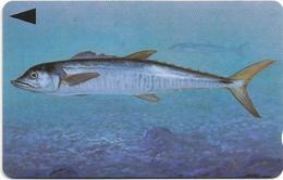 Bahrain - Fish Of Bahrain - Spanish Mackerel - 39BAHR - 1996, 200.000ex, Used - Baharain