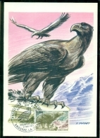 CM-Carte Maximum Card #1972-Andorre-Andorra#Oiseaux,Vögel,birds # Aigle,Adler,spread Eagle - Cartes-Maximum (CM)