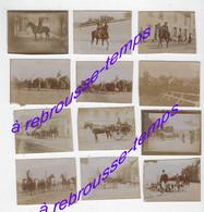 Vers 1880--thème Le Cheval-12photos Albuminées :cheval à La Chasse, En Course Ou Dans La Vie Quotidienne-5,7 X 4,3cm - Photos