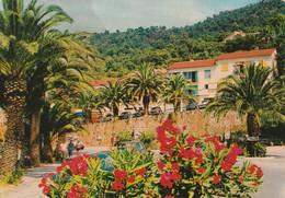 LE RAYOL (83). Fleurs Au 1er Plan. Au Fond Voitures. Lumière Et Beauté De La Côte D'Azur - Autres Communes