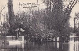 16. VIBRAC. CHATEAUNEUF SUR CHARENTE..CPA. BORDS DE LA CHARENTE . VUE PANORAMIQUE. ANIMATION - Chateauneuf Sur Charente