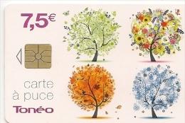 CARTE-PUCE-7.5€-GEM-CC-CT A-TONEO ARBRES SAISONS-31/12/2015-Petit N° Série/--TBE - France