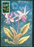 """CM-Carte Maximum Card #1980-Andorre-French-Andorra # Fleurs,Flowers,Blumen """" Bermudagrass"""" (Liquidation) - Cartes-Maximum (CM)"""