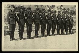 WW II DR Postkarte , RAD Mit Spaten Angetreten : Ungebraucht. - Allemagne