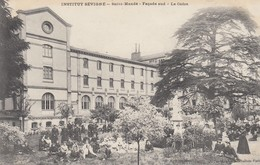 94 - Val De Marne - St-Mandé - Institut Sévigné - Façade Sud - Le Cèdre - Un Magnifique Rassemblement - Saint Mande