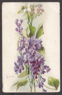 93397/ FLEURS, Illustration, Lilas, 1904 - Bloemen