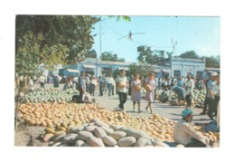 03457 Osh Melon Market Ropewalker - Kirghizistan