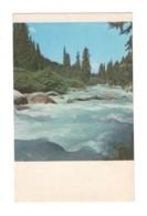 04909 Mountain River - Kirghizistan