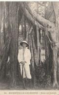 Sous Un Banian - New Caledonia