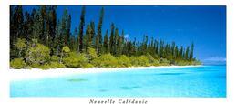 CPA-1995-NOUVELLE-CALEDONIE -ILE Des PINS-Ilot BROSSE-Edit Solaris-Ft 10,5 X21 Cm-TBE - New Caledonia