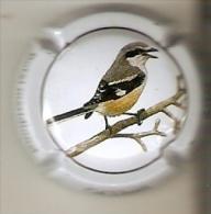PLACA DE CAVA CAL LLUSIA DE UN PAJARO-BIRD  (CAPSULE) BOTXI MERIDIONAL  (RARA) - Placas De Cava