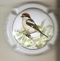 PLACA DE CAVA CAL LLUSIA DE UN PAJARO-BIRD  (CAPSULE) CAPSIGRANY  (RARA) - Placas De Cava