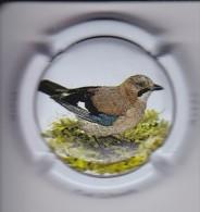 PLACA DE CAVA CAL LLUSIA DE UN PAJARO-BIRD  (CAPSULE) ARRENDAJO - GAIG - Placas De Cava