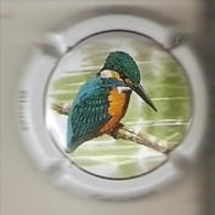 PLACA DE CAVA CAL LLUSIA DE UN PAJARO-BIRD  (CAPSULE) MARTIN PESCADOR (RARA) - Placas De Cava