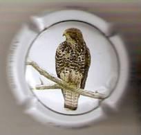 PLACA DE CAVA CAL LLUSIA DE UN PAJARO-BIRD  (CAPSULE) AGUILA-EAGLE - Placas De Cava