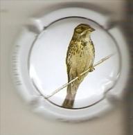 PLACA DE CAVA CAL LLUSIA DE UN PAJARO-BIRD  (CAPSULE) CRUIXIDELL  (RARA) - Placas De Cava