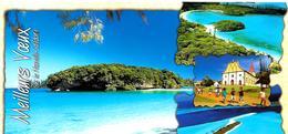 CPA-1995-NOUVELLE-CALEDONIE -ILE Des PINS-MultivuesFt 10,5 X21 Cm-TBE - New Caledonia