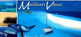 CPA-1995-NOUVELLE-CALEDONIE -ILE Des PINS-A La Rencontre Des Baleines-Vue Aerienne-Ft 10,5 X21 Cm-TBE - New Caledonia