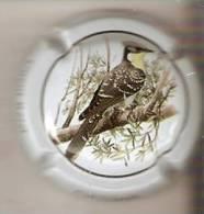 PLACA DE CAVA CAL LLUSIA DE UN PAJARO-BIRD  (CAPSULE) CUCO REAL - Placas De Cava