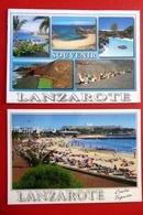 2 X Lanzarote - Costa Teguise - Atlantischer Ozean - Spanien - Vulkan - Kanaren - Strand Kamele - Lanzarote