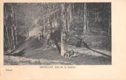 BRUXELLES - Bois De La Cambre - Forêts, Parcs, Jardins