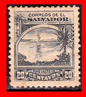 EL SALVADOR AÑO 1896 – 20 CENTAVOS OFICIAL - El Salvador