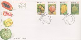 Singapore 1993 Local Fruits FDC - Singapore (1959-...)