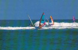Hawaii Honolulu Windsurfing - Honolulu