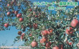 Télécarte  Japon / 110-011  - Fruit - POMME - APPLE Fruits Japan Phonecard - APFEL Obst TK - 102 - Alimentation